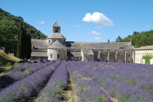 "Abbey in France with lavender field-""Sénanque 06"" by EmDee"