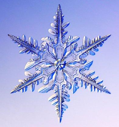 ig35_snowflakes_04_02