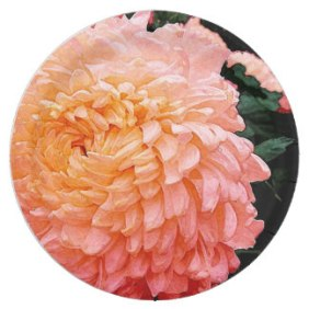 dark_peach_watercolor_chrysanthemum_paper_plate-rb64bfcf49bb540a99ef8e59cda8fc064_zkbhg_324