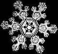 120px-Schnee2