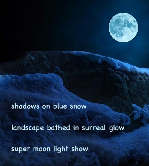 Snow Landscape Fullmoon Night Mountain
